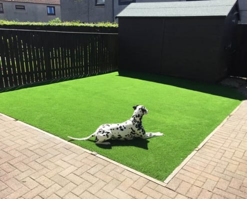Artificial Turf Installation Glenrothes by The Artificial Lawn Company, Livingston, West Lothian.